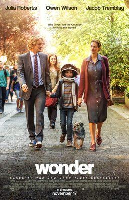 Filmy po angielsku - plakat filmu Cudowny Chłopak